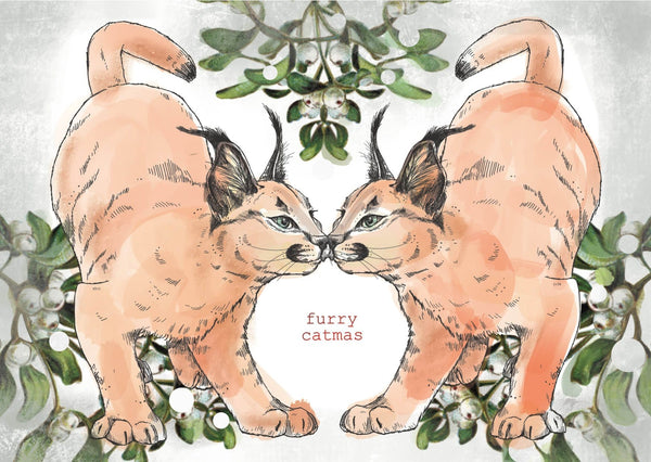 This image is of a card which features a mirrored cat and the words Furry Catmas