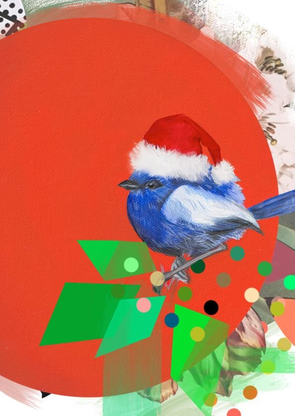 Fairywren Christmas