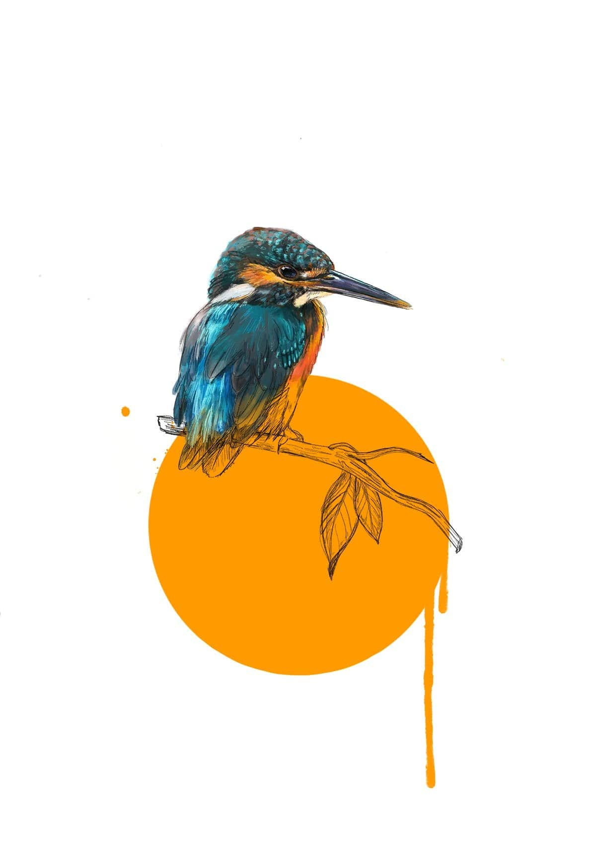 Kingfisher Giclée Art Print