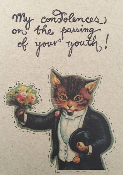 Condolences Kitty Greeting Card