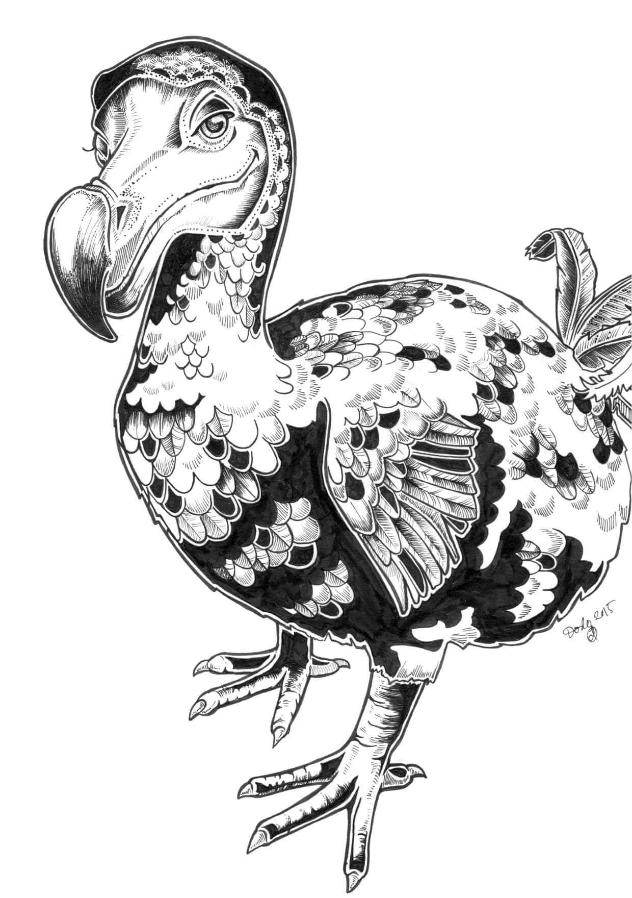 Dodo Greeting Card