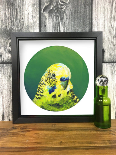 Framed Green Budgie