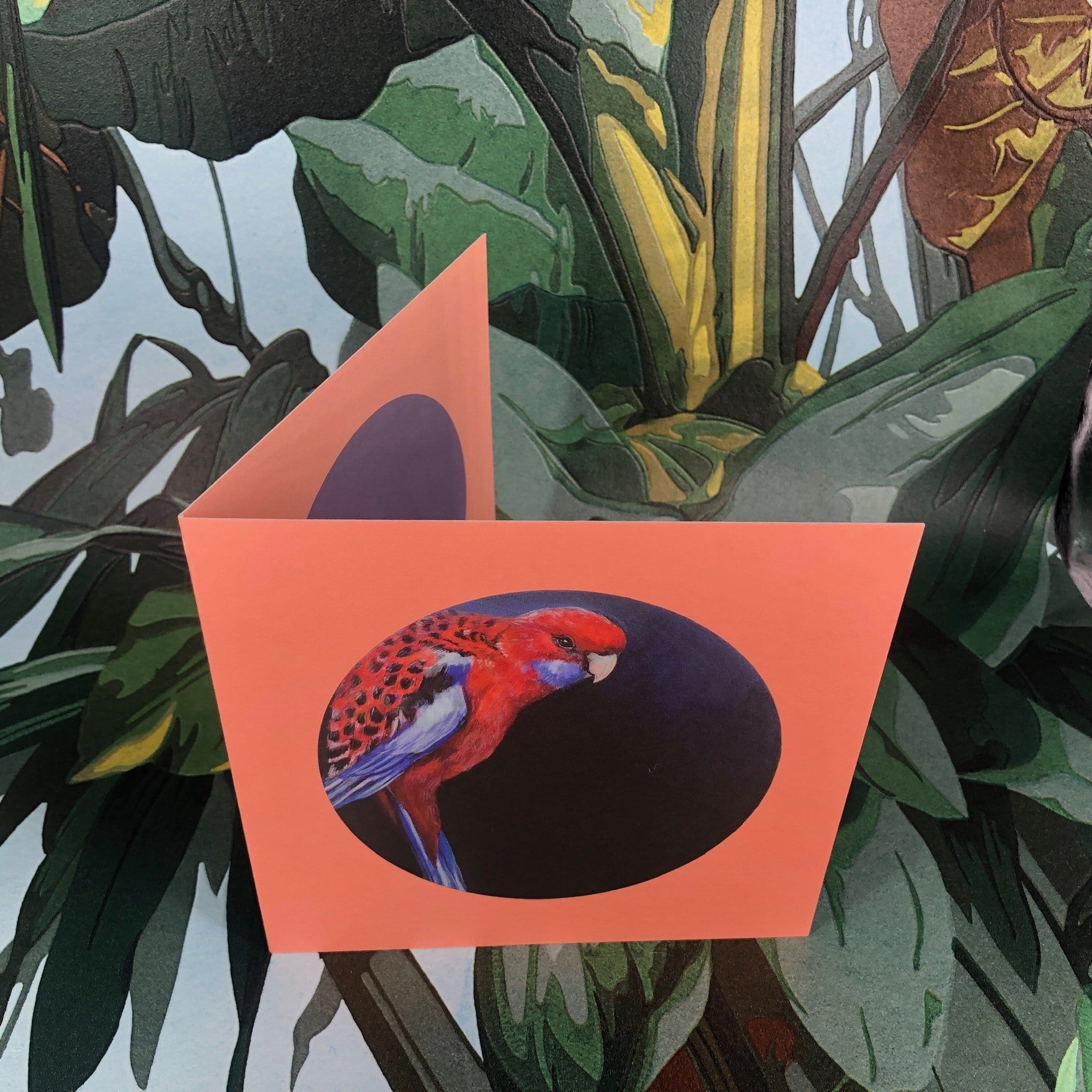 Crimson Rosella Greeting Card