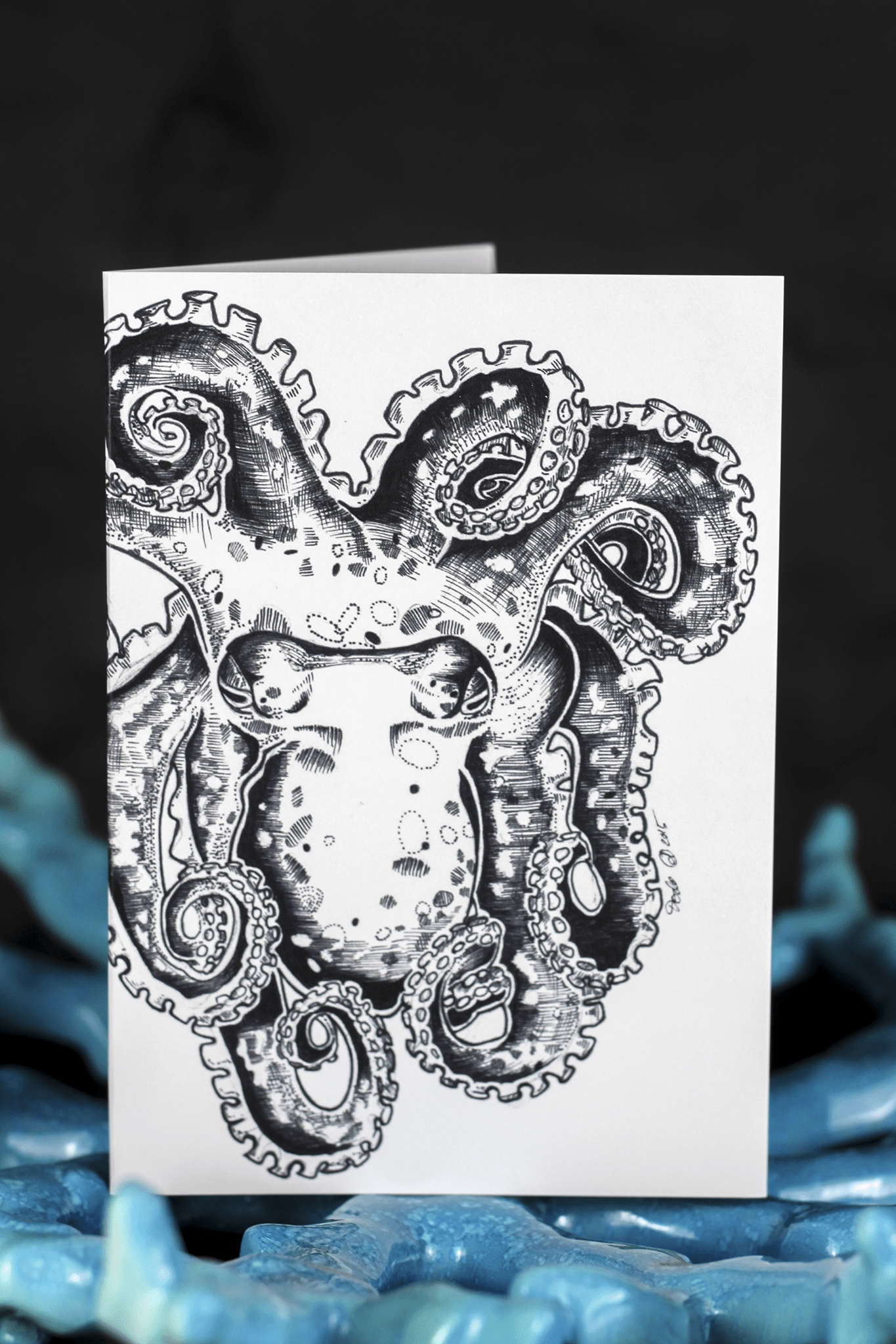 Sea Creatures Greeting Card Set