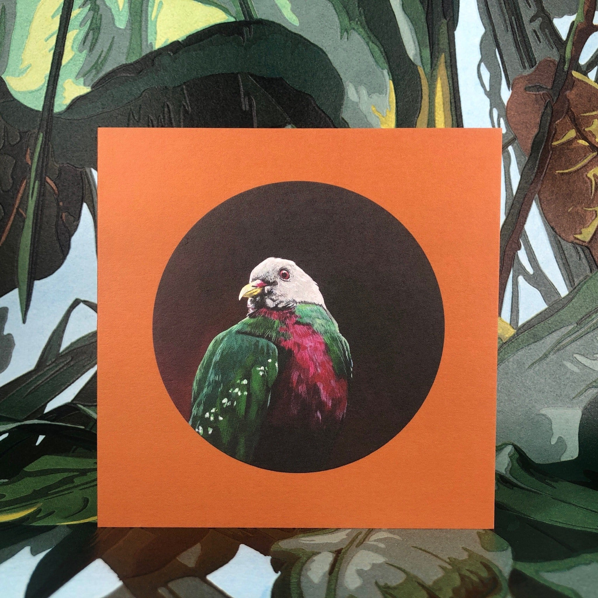 Wompoo Fruit Dove Greeting Card