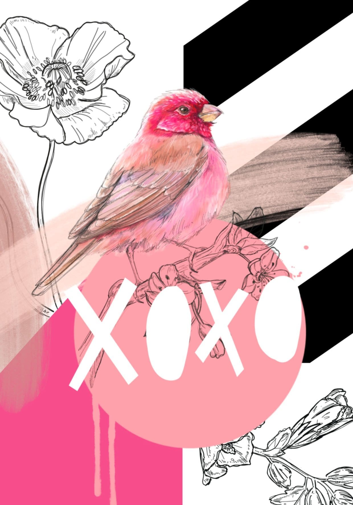 Rose Finch XOXO Greeting Card