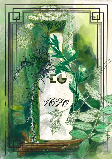 Edinburgh Gin 1670 Botanical Giclée Art Print