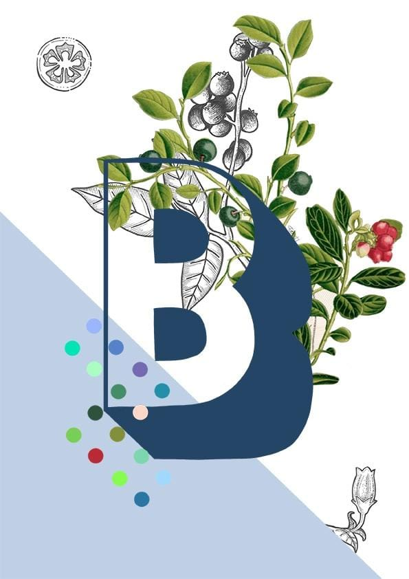 Card featuring the letter B