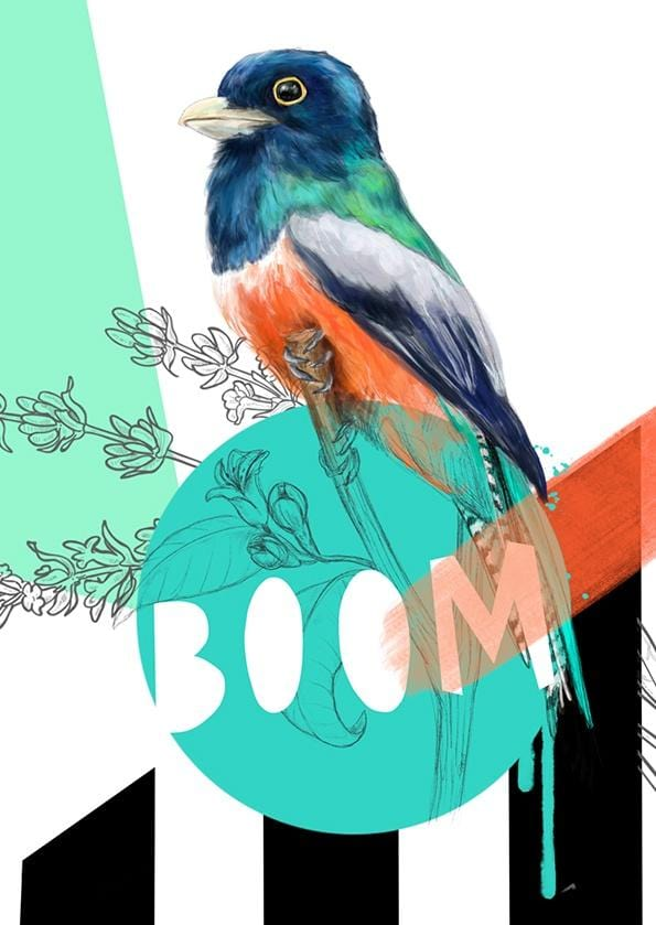 Blue Crowned Trogon - Boom Greeting Card