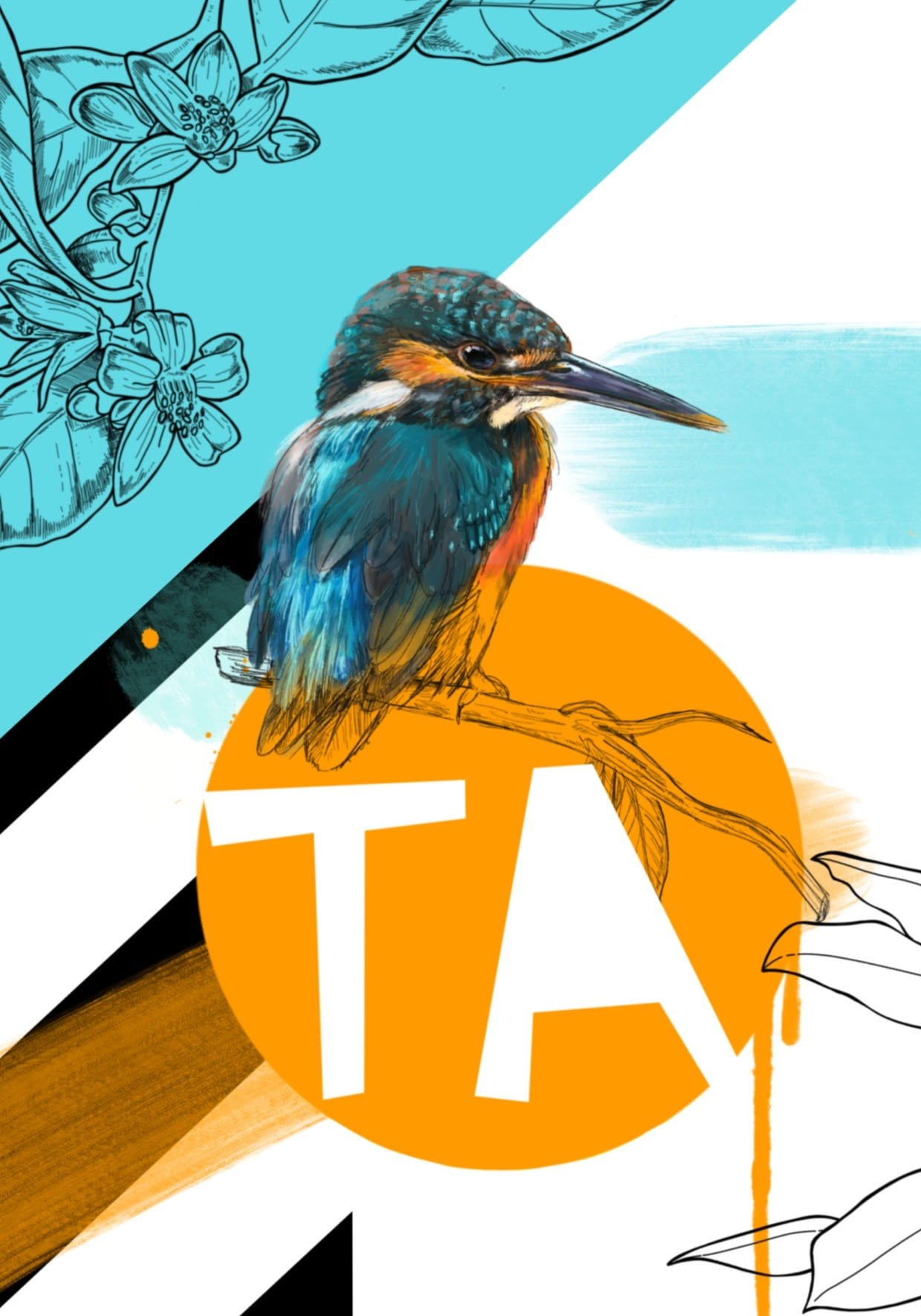 Kingfisher - Ta Greeting Card