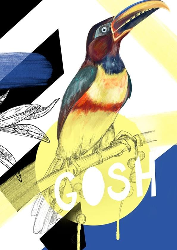 Chestnut-eared araçari - Gosh Greeting Card