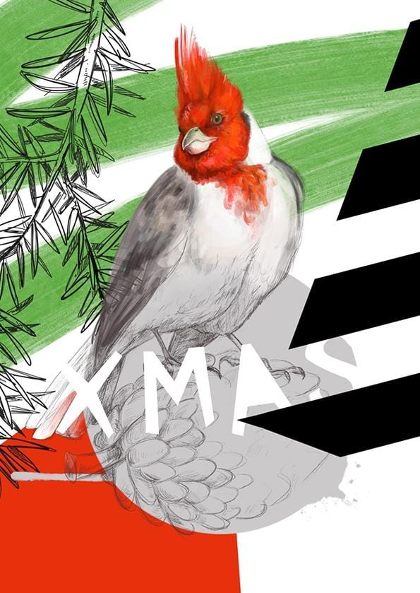 Red-crested cardinal - Xmas Greeting Card