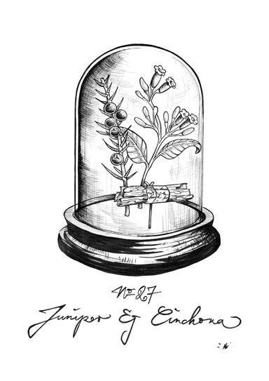 No 27 Juniper & Cinchona Bell Jar Matte Art Print