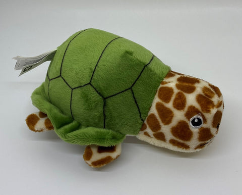 Green sea Turtle Huba