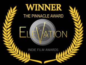 The Homecoming gets a Pinnacle Award - good start to the Festival Circuit