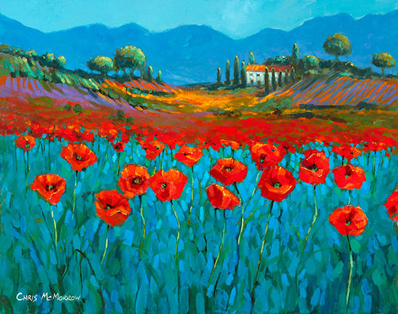 A painting of Poppies from Provence, France