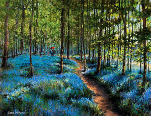 A couple take a romantic walk in a forest of bluebells