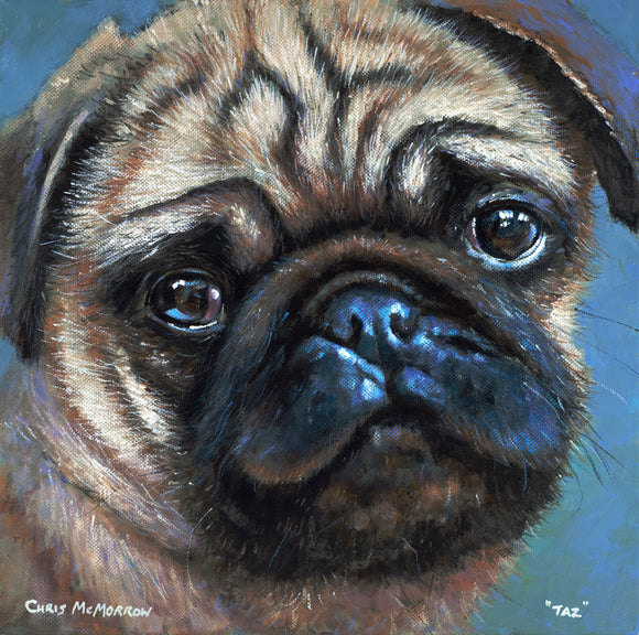 Painting of Pug dog named Taz