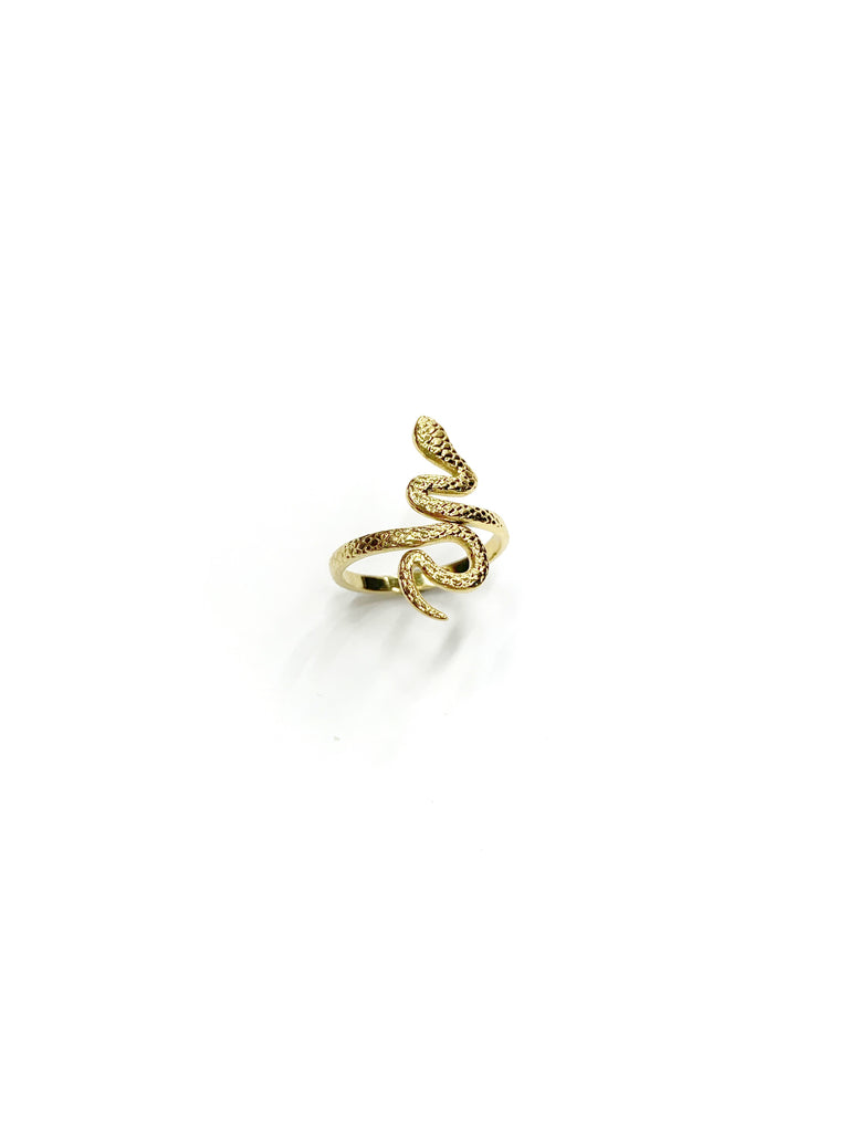 Python Ring ( Stainless Steel)