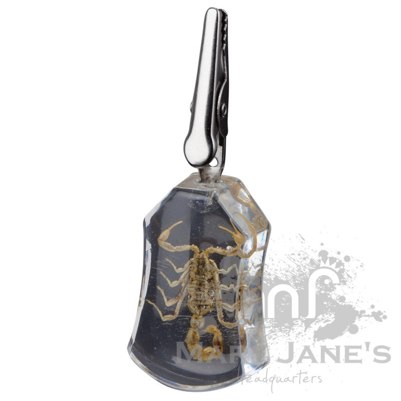 Clear Bug Roach Clips - Scorpion