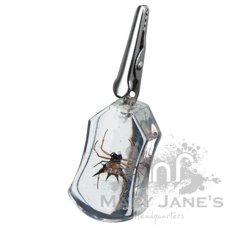 Clear Bug Roach Clips - Spider