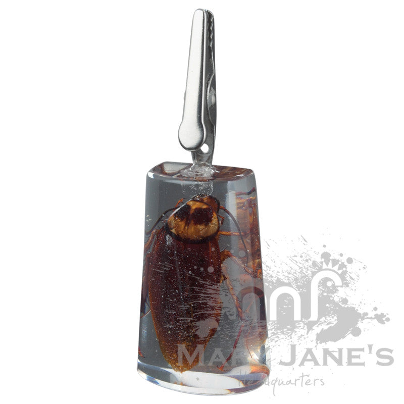 Clear Bug Roach Clips - Black Scorpion