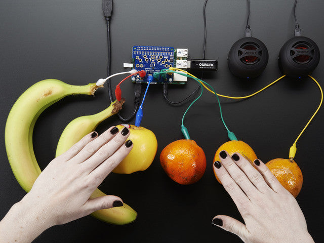 Adafruit Capacitive Touch HAT for Raspberry Pi - Mini Kit - Chicago Electronic Distributors  - 2