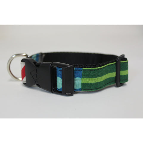 multi color dog collar