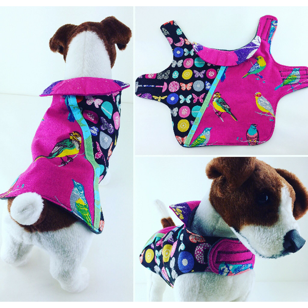Custom Dog Coats: Portfolio