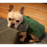 Custom Dog Coats: Portfolio - BabyLuxDesign