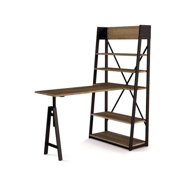 Modern wood and metal adjustable desk and bookcase