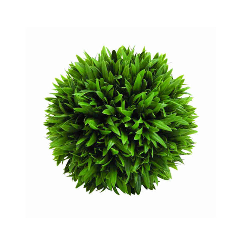 Picture of Grass Ball