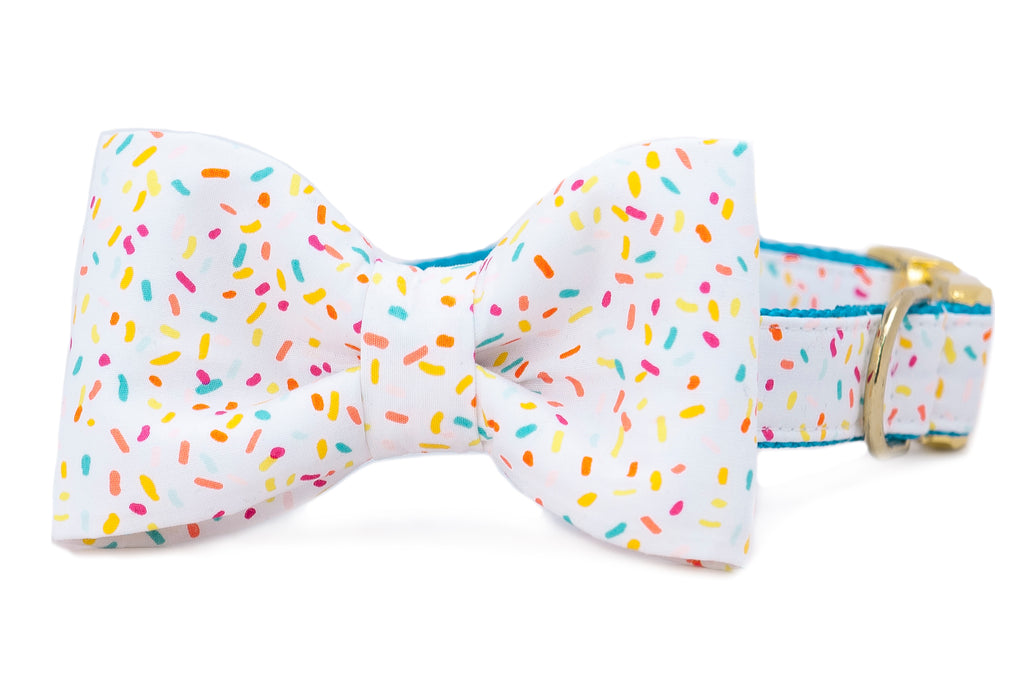 Birthday Sprinkles Bow Tie Dog Collar