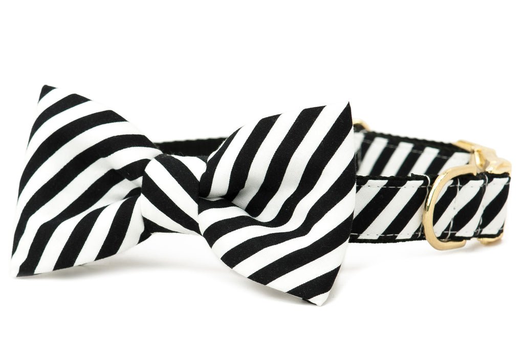 Crew LaLa Black & White Stripe Bow Tie Dog Collar