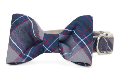 Calhoun Plaid Bow Tie Dog Collar