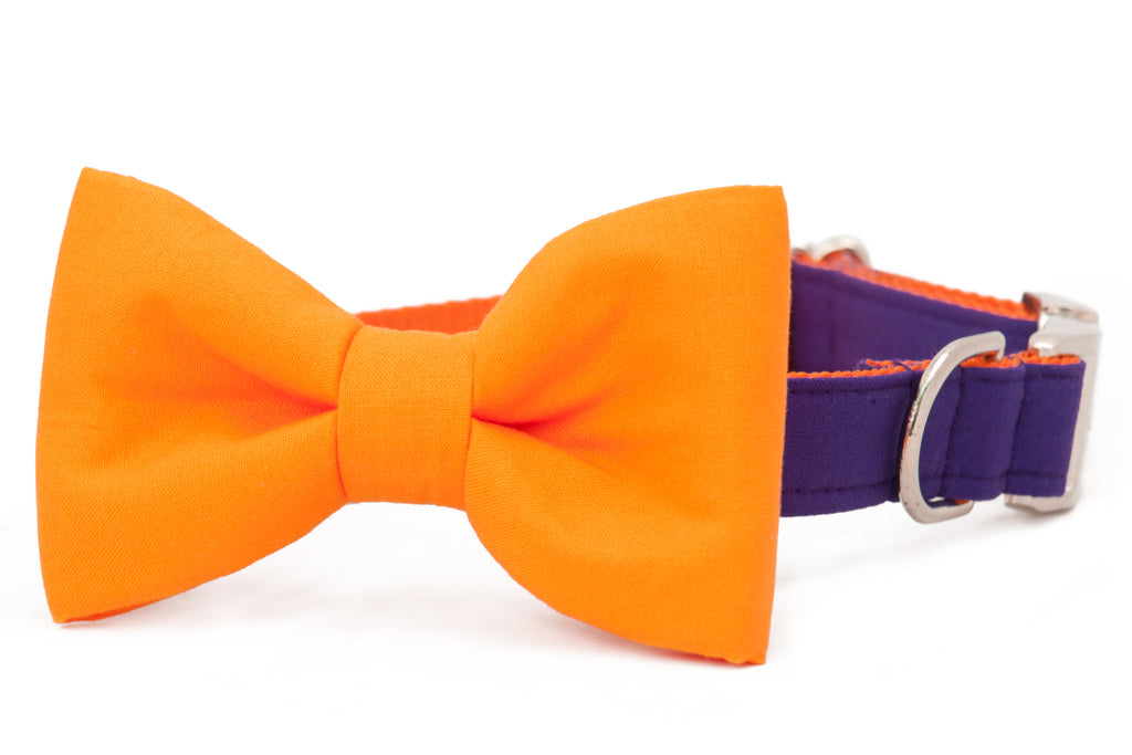 Clemson Orange on Purple Bow Tie Dog Collar