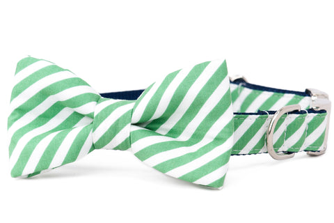 Crew LaLa Evergreen Stripe Bow Tie Dog Collar