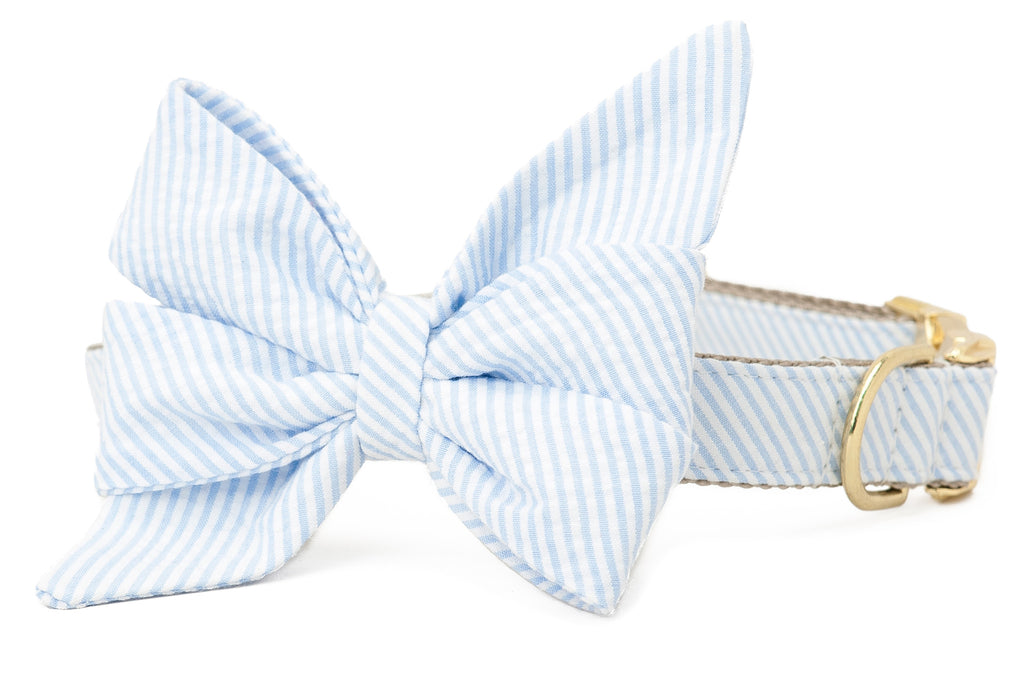 Light Blue Seersucker Belle Bow Collar