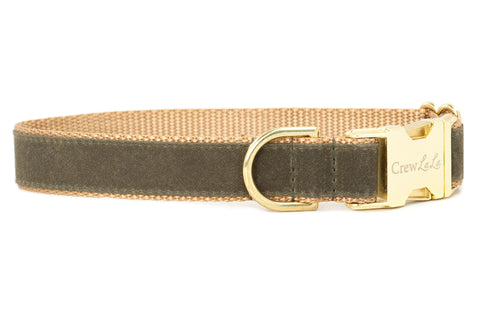 Olive Waxed Cotton on Gold Dog Collar