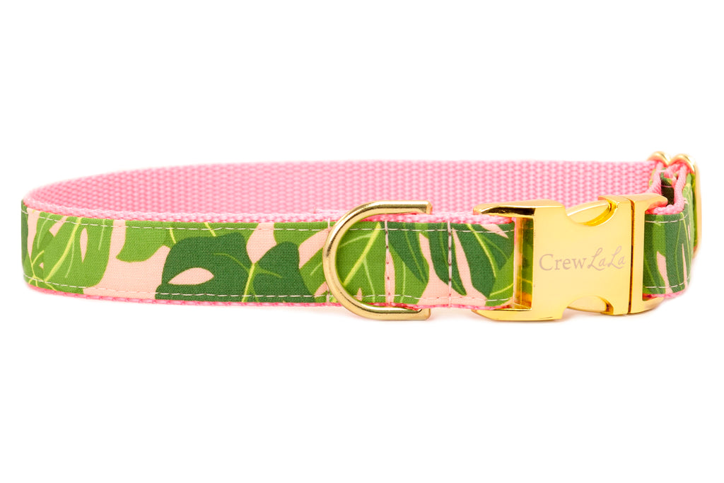 American Made Dog Collars Bow Ties Girl Bows Leashes Crew Lala