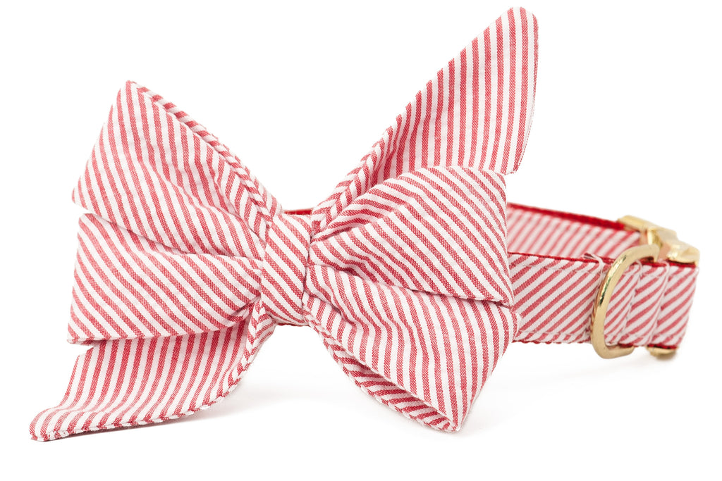 Red Seersucker Belle Bow Collar