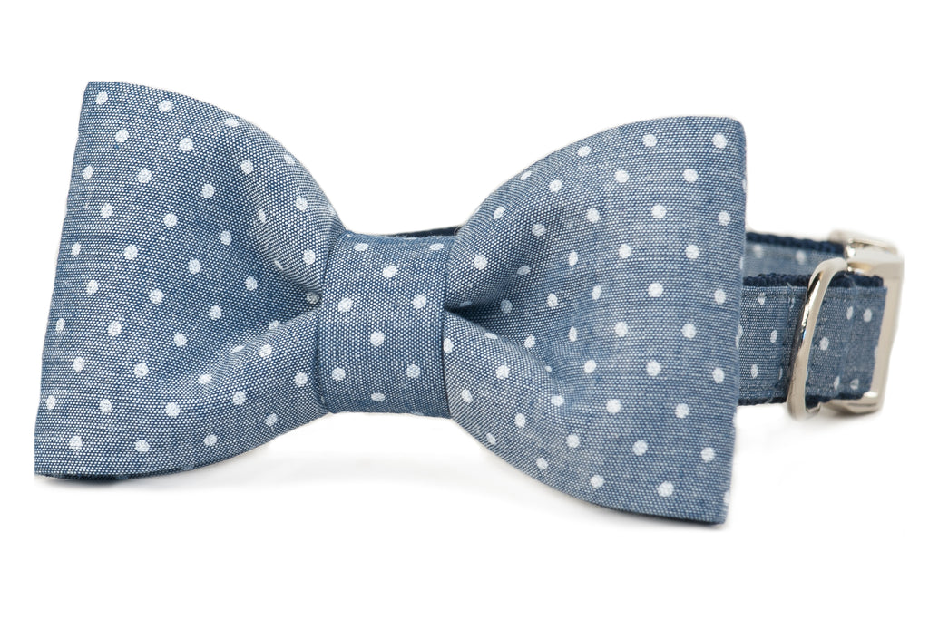 Tiny Dots on Chambray Canvas Bow Tie Dog Collar