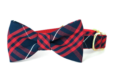 Town and Country Bow Tie Dog Collar