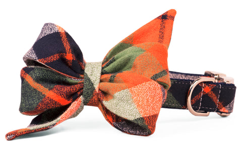 Adventure Plaid Belle Bow™ Dog Collar