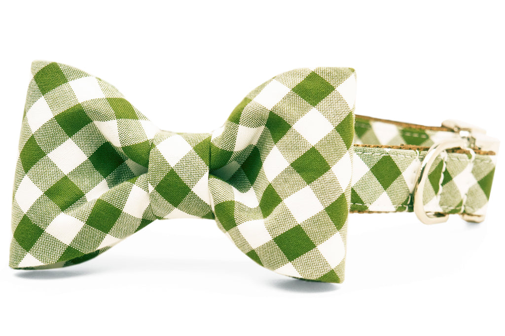 Avocado Check Bow Tie Dog Collar