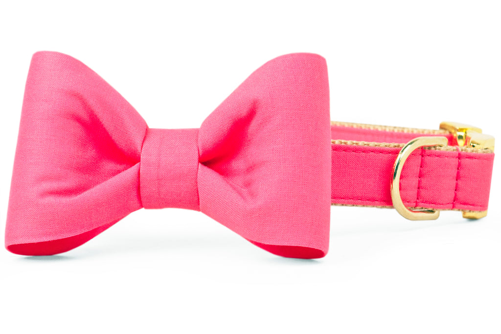 Azalea Pink Bow Tie Dog Collar