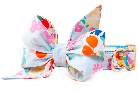 Powder Blue Petals Belle Bow Dog Collar