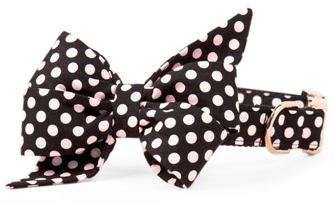 Black & White Polka Dot Belle Bow Dog Collar