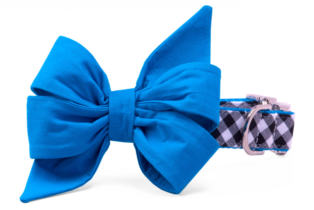 Panthers Blue on Black Check Belle Bow Dog Collar