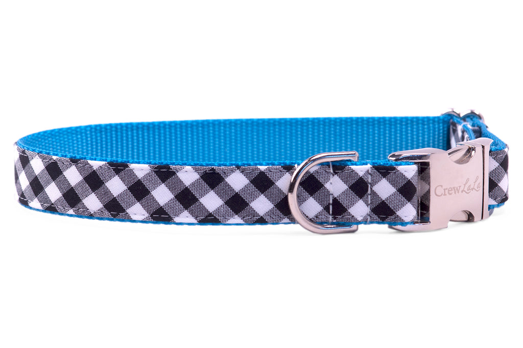 Panthers Black Check on Blue Dog Collar